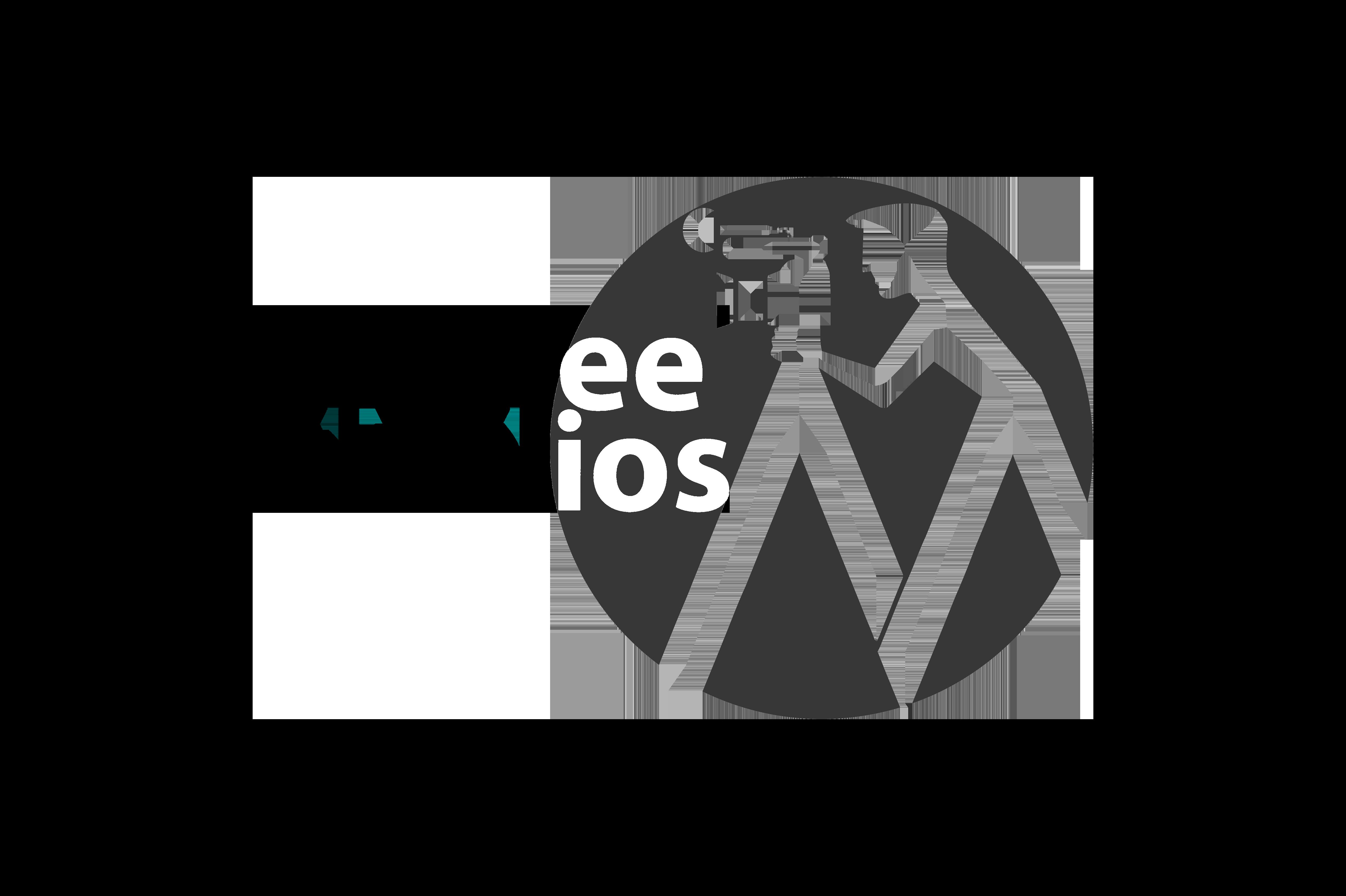 Mcafee Studios Logo